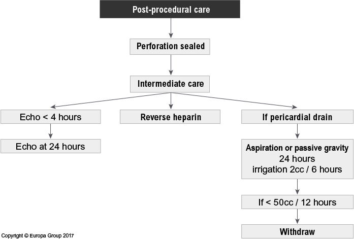 Coronary perforation algorithm: post-procedural care