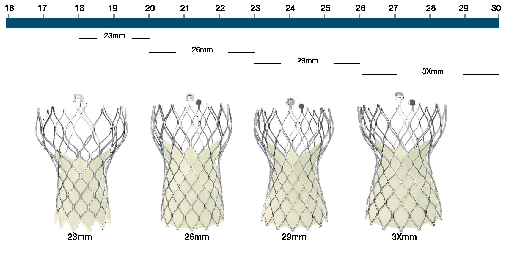 Figure 111. Medtronic CoreValve Evolut R transcatheter aortic valve