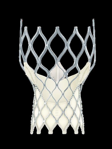 Medtronic CoreValve Evolut transcatheter aortic valve