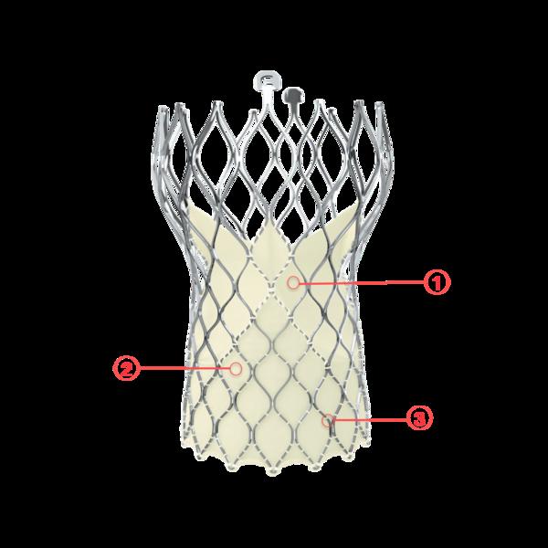 Figure 110. Medtronic CoreValve Evolut R transcatheter aortic valve