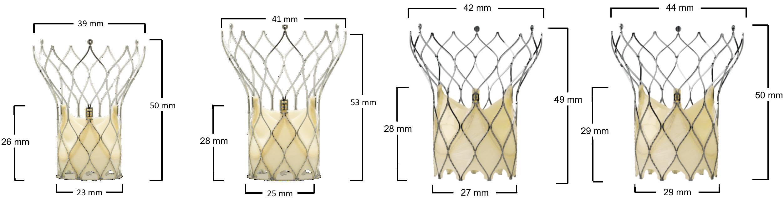 Portico™ aortic valve