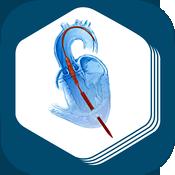 PCR Valve Atlas app